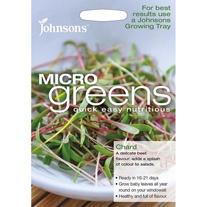Microgreens Chard
