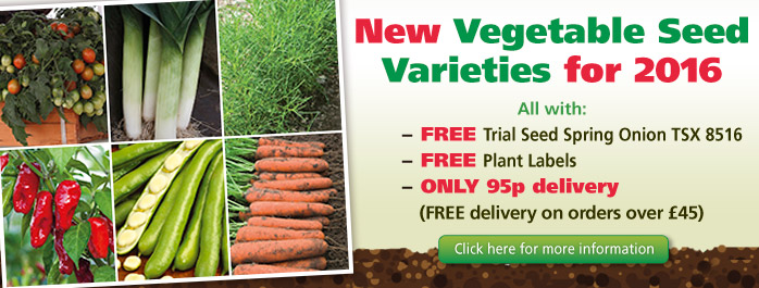 New 2016 Vegetable Seed Varieties