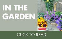 In The Garden Blog