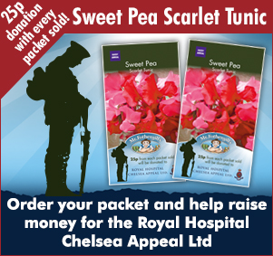 Sweet Pea Scarlet Tunic charity packet