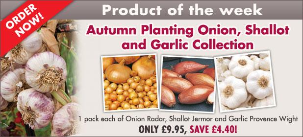 Autumn Planting Onion, Shallot & Garlic Collection - SAVE £4.40!