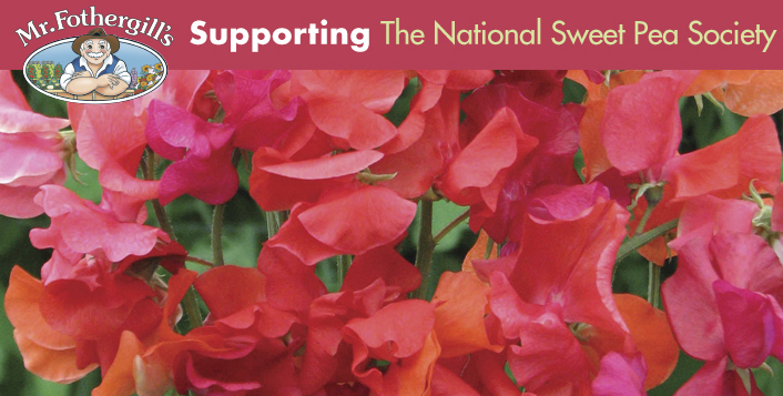 Mr Fothergill's is proud to support The National Sweet Pea Society