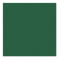 24cm 2ply Dark Green Cocktail Napkin | Select Catering Solutions Ltd