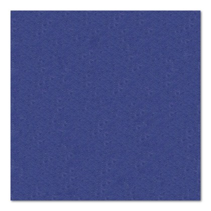 24cm 2ply Dark Blue Cocktail Napkin