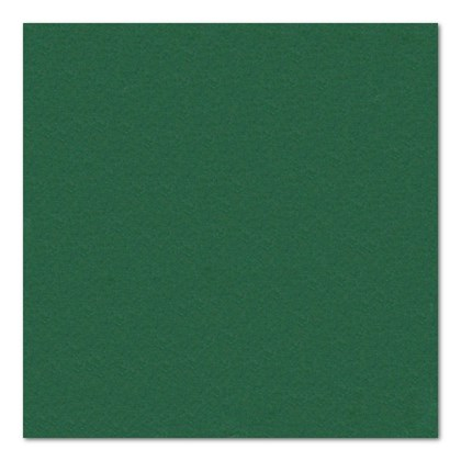 24cm 2ply Dark Green Cocktail Napkin
