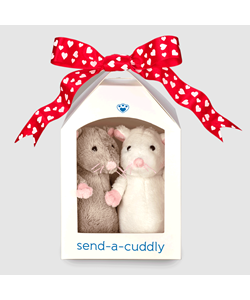 Lovable Pair of Mice | Buy from send-a-cuddly