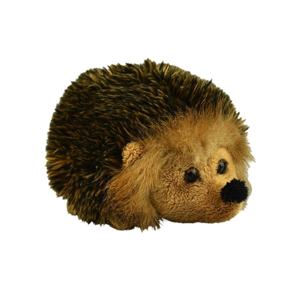 Handsome Hedgehog