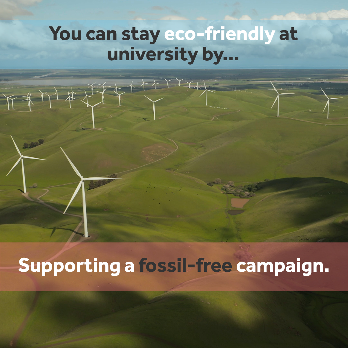Support a fossil-free campaign - eco friendly at university
