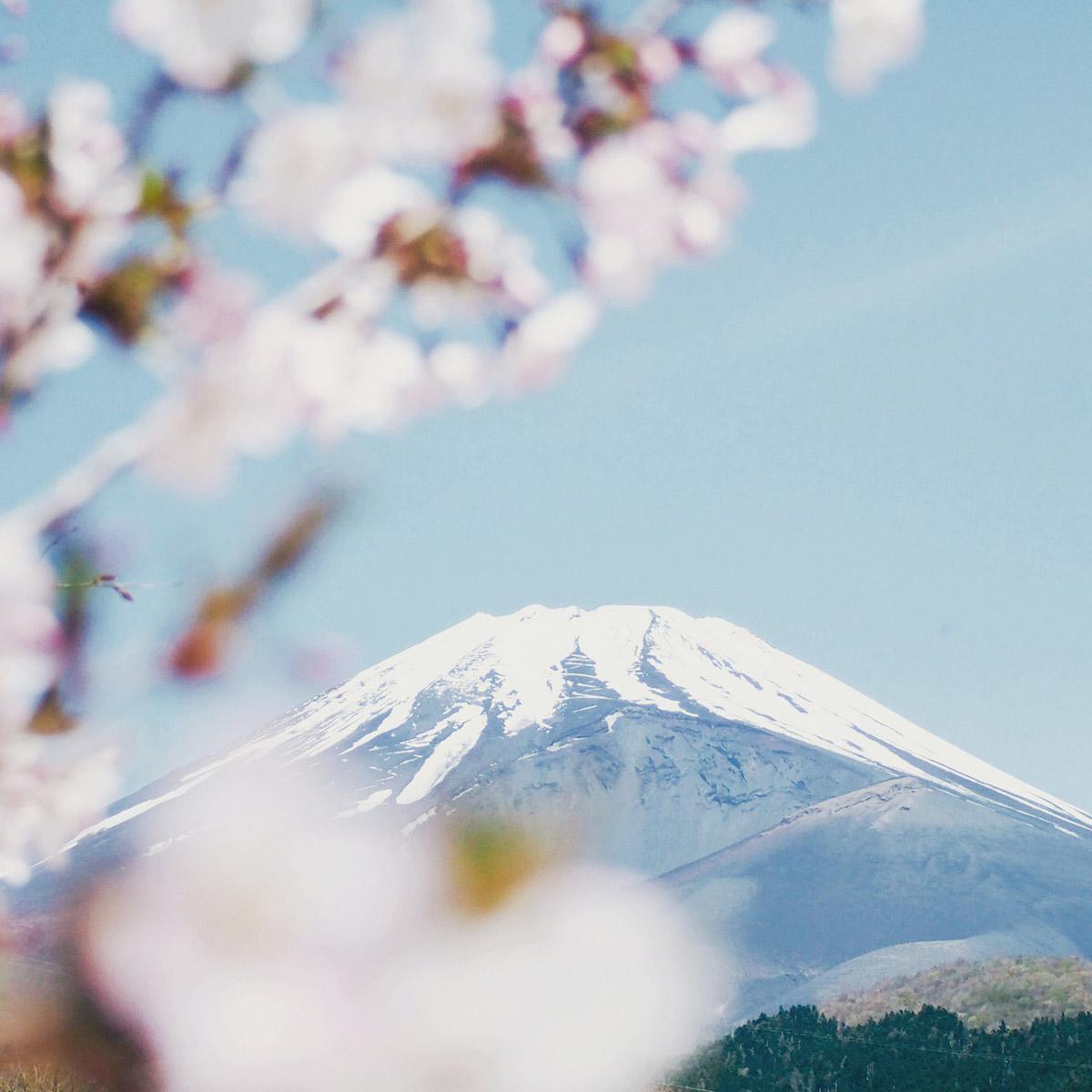 Bucket List Travel 2021 - Japan