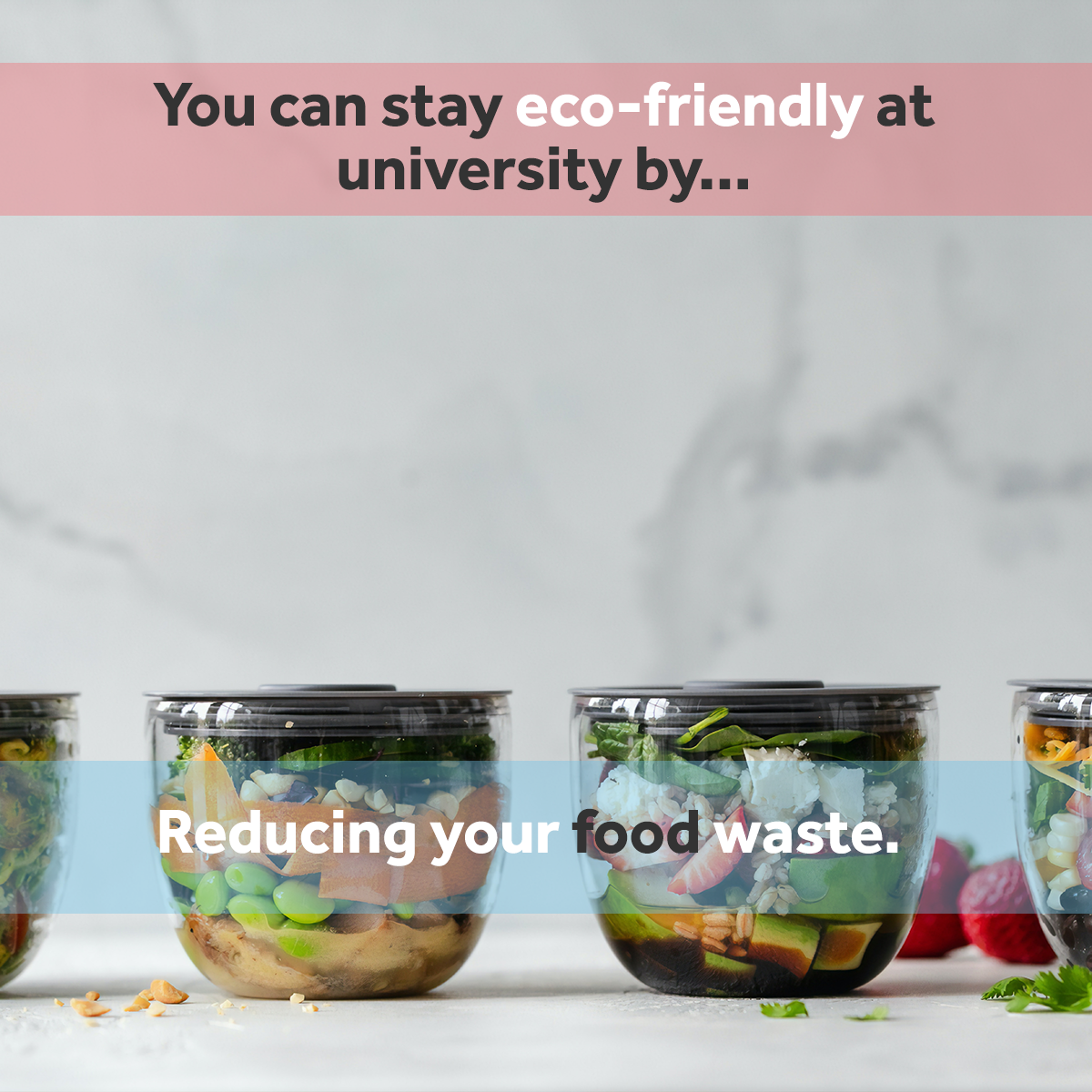 Reduce food waste - staying eco friendly at university