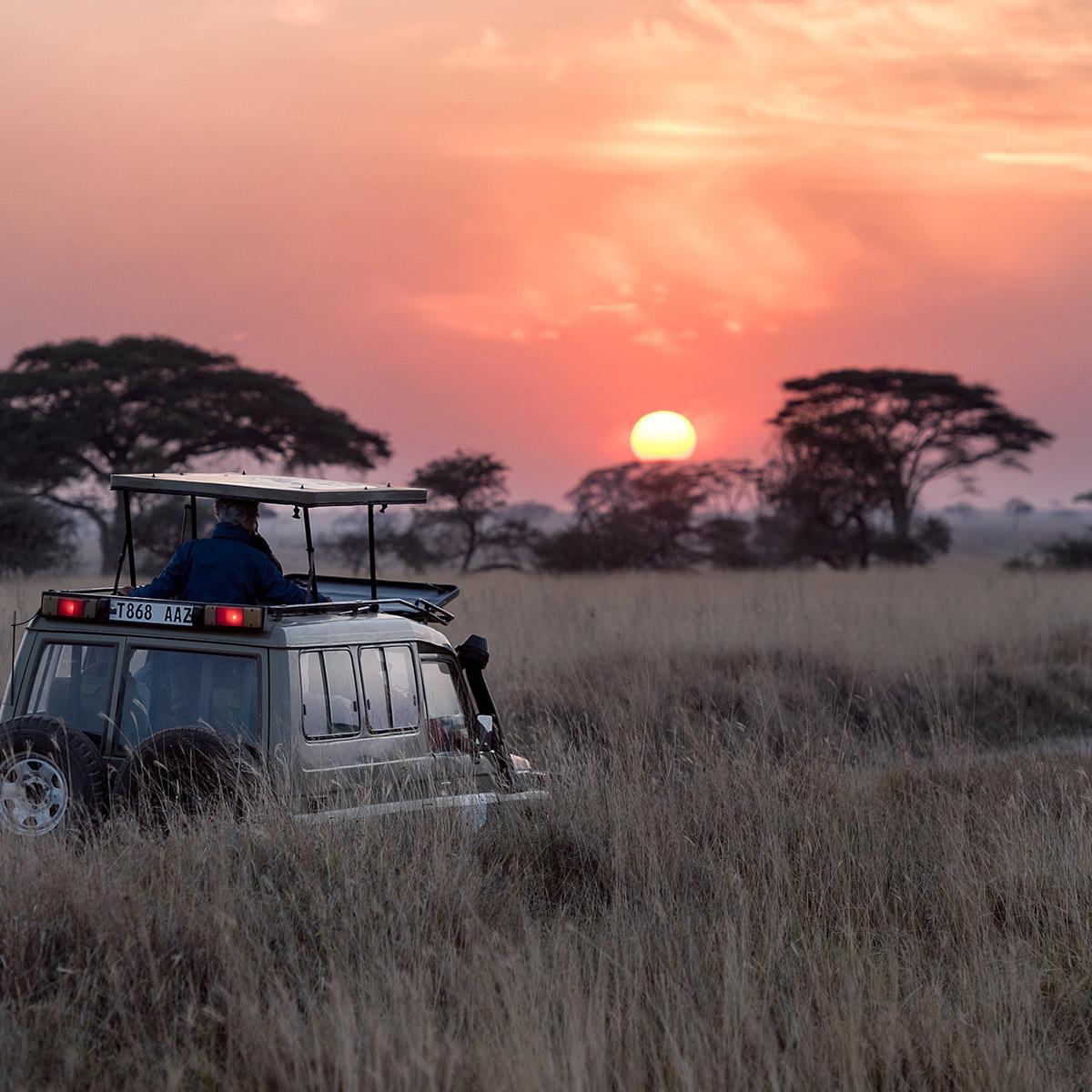 Bucket List Travel 2021 - Serengeti