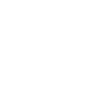 Levy Library Publishing Portal