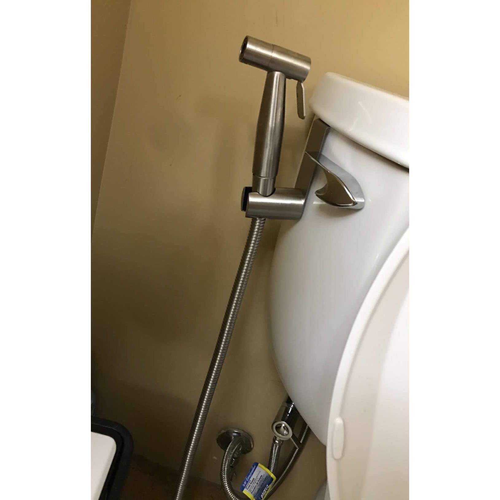 Aqua Nexis Steel Sprayer – Jamie Park: Bathroom Master