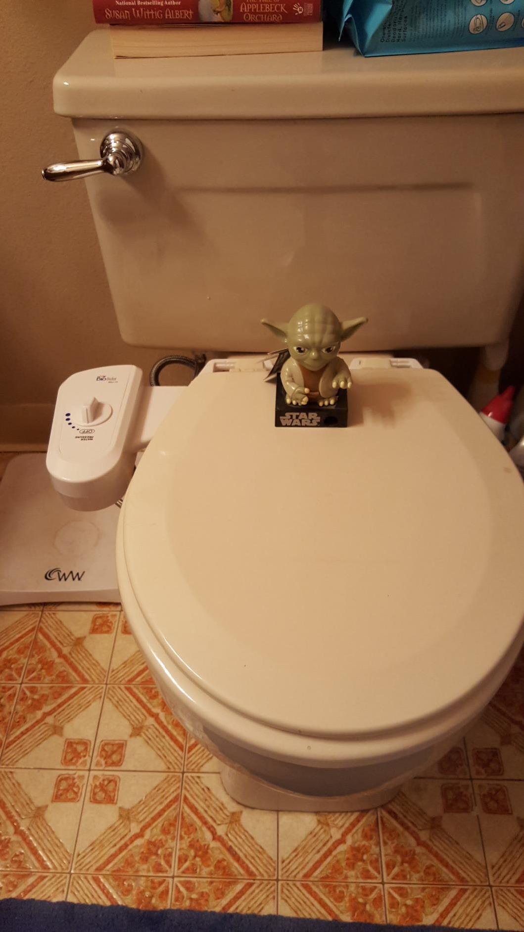 BioBidet Simplet BB-70 Bidet Attachment – Jamie Park: Bathroom Master