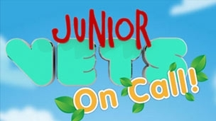 junior vets on call be on a show 304x171