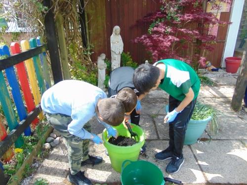 Care of the Prayer Garden