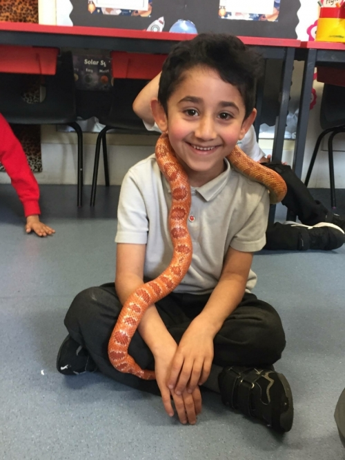 Year 1's day with snakes!