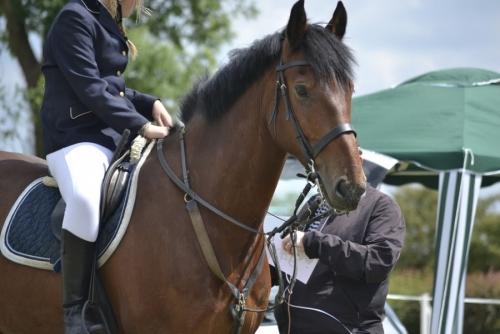 SHS Equestrian Team Report