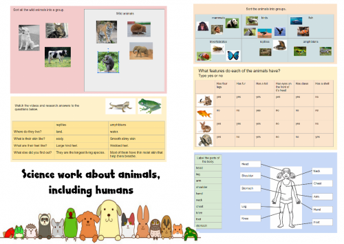 Science - animals, including humans