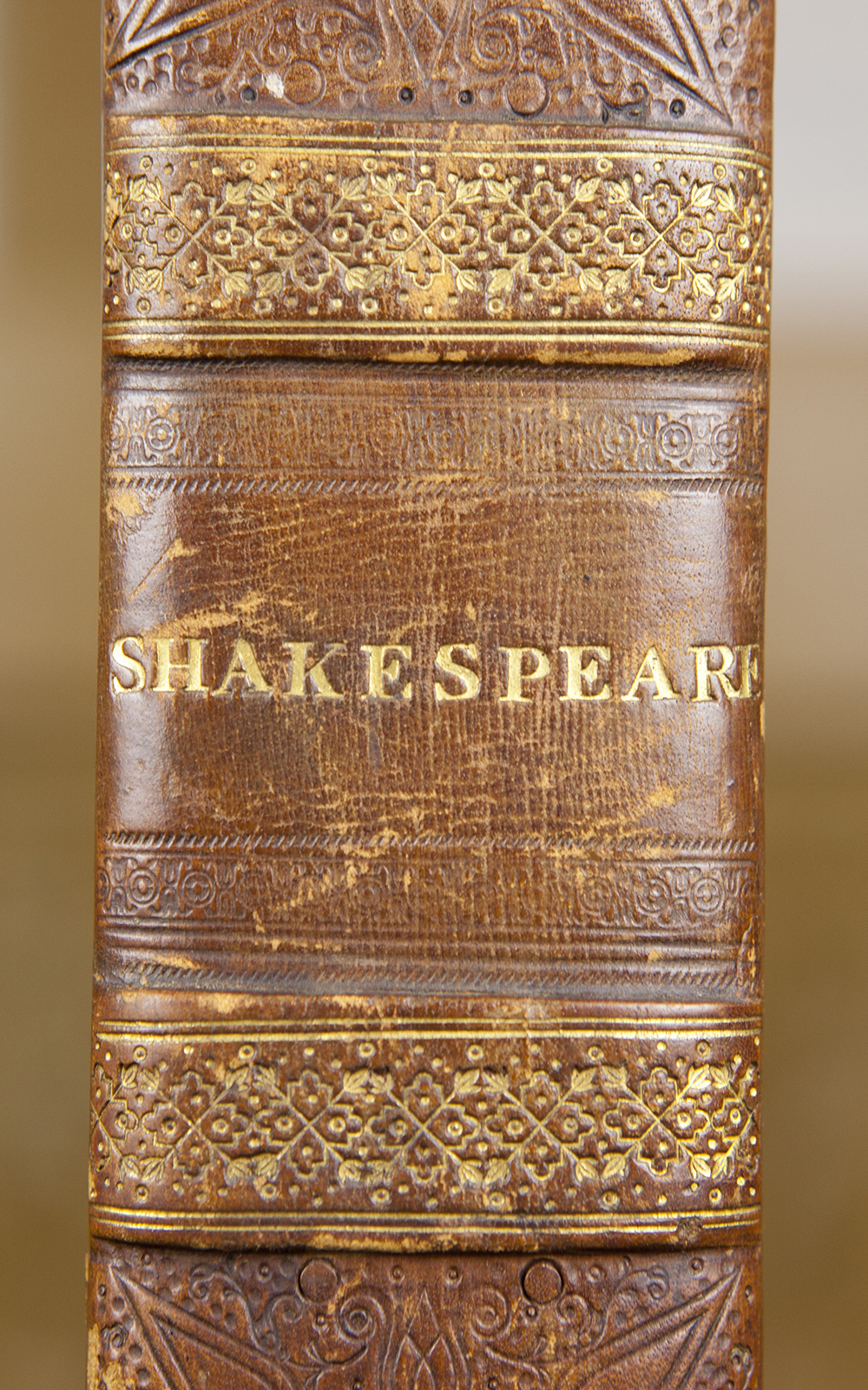The brown spine of a book shows the word Shakespeare