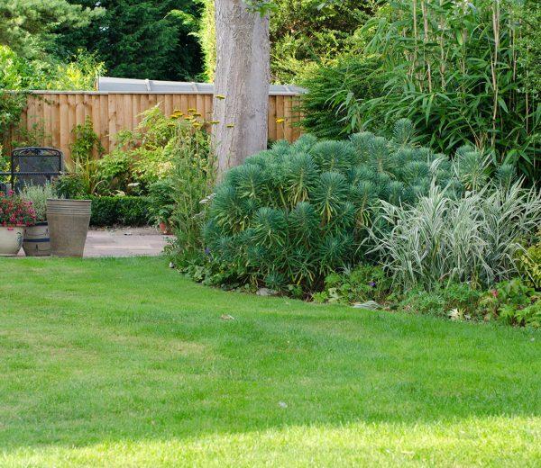 10 Simple Gardening Hacks to Make Your Life Easier