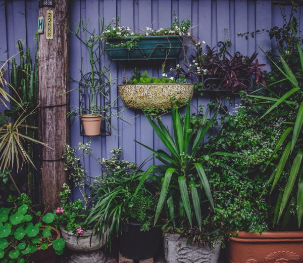 5 Ways to Make the Most of a Small Garden