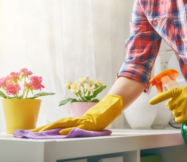 How to Spring Clean Your Home in a Day