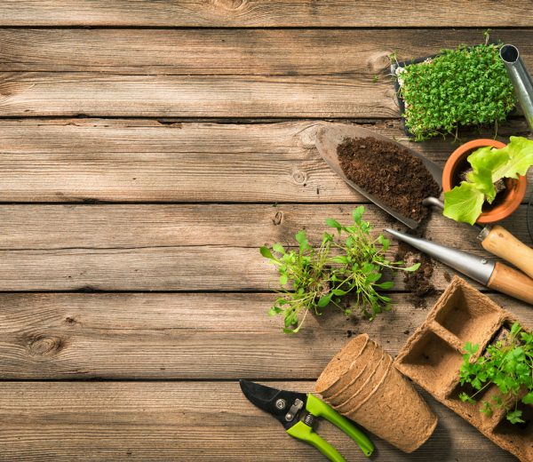 How to Spring Clean Your Garden for a Better Summer