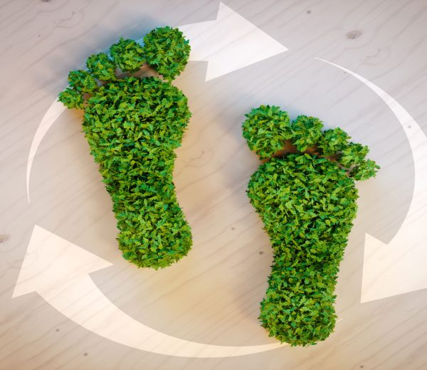 8 Simple Ways to Cut Your Personal Carbon Footprint