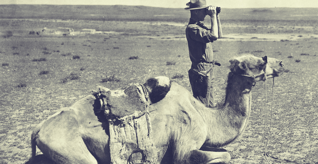 Fossil Hunting in the Gobi