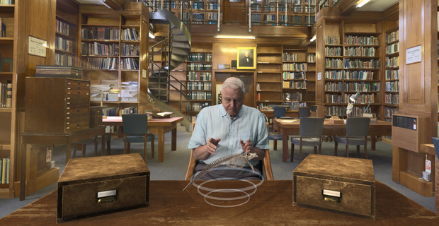 Hold The World with David Attenborough