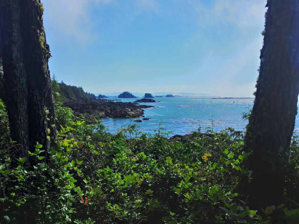 Ostrůvky při pobřeží