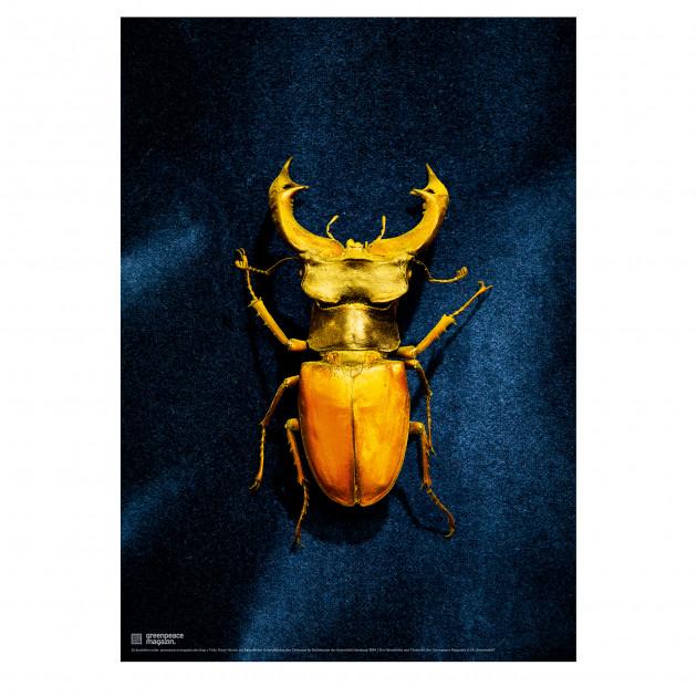 "Poster ""Artenvielfalt"" blau"