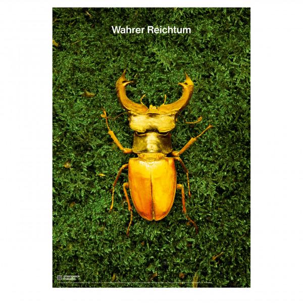 """Titelposter """"Artenvielfalt"""" grün"""