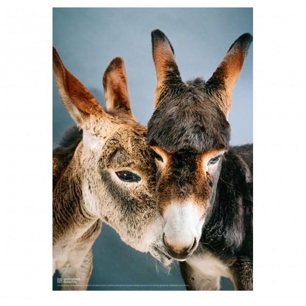 """Poster """"So ein Esel"""" (Jolee und Jaro)"""