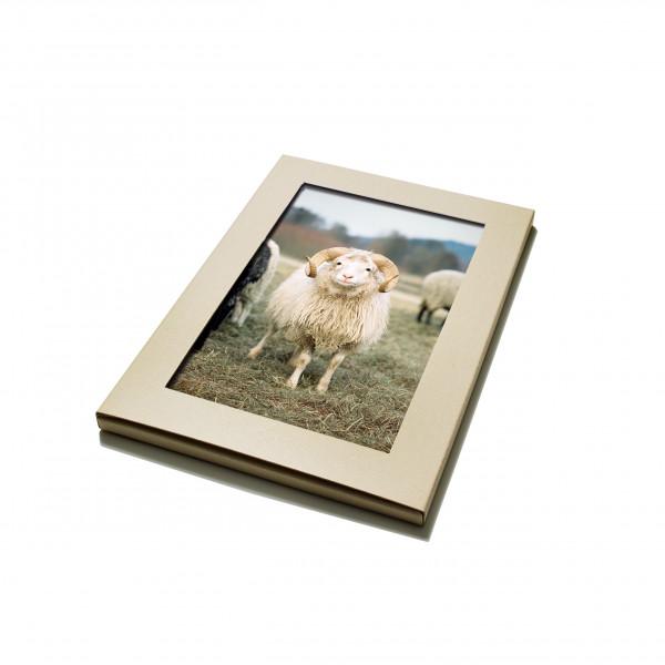 Postkarten-Set Skudden, Pferde, Lockengänse