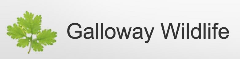 Galloway logo