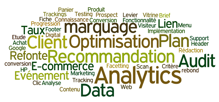 Wordle audit webanalytics