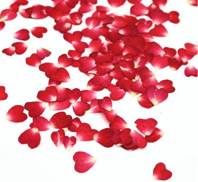 Pressed flowers, red rose petals 20pcs floral art ideas, resin craft jewellery