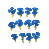 Pressed flowers, turquoise sweet william 20pcs floral art, craft