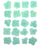 Pressed flowers, baby blue hydrangea 20pcs floral art resin craft