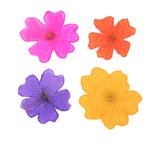 Pressed flowers, verbena 20pcs yellow, hot pink, violet, orange 4cols