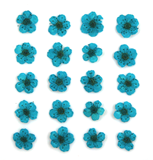 Pressed flowers, turquoise bridal wreath 20pcs floral art resin craft nail art