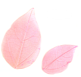 Pressed leaves foliage, baby pink 20pcs floral art, resin craft