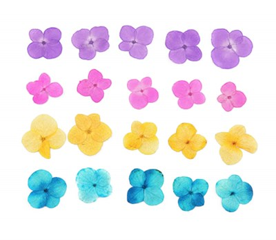 Pressed flowers, hydrangea 20pcs pink, purple, yellow, turquoise floral art