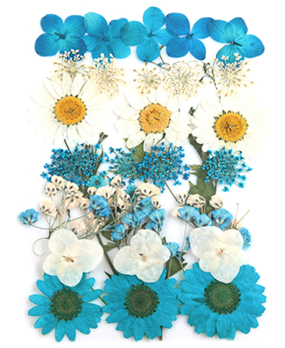 Pressed flowers foliage in white & turquoise, marguerite hydrangea bridal wreath