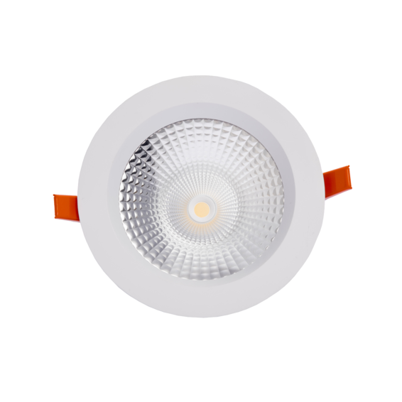 PLEX DOWNLIGHT Regulable 25W 4000K Blanco | Silver Sanz