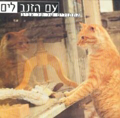 עם הזנב לים - החתולים של תל אביב - יעל רונן