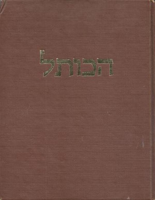 הכותל - מאיר בן-דב