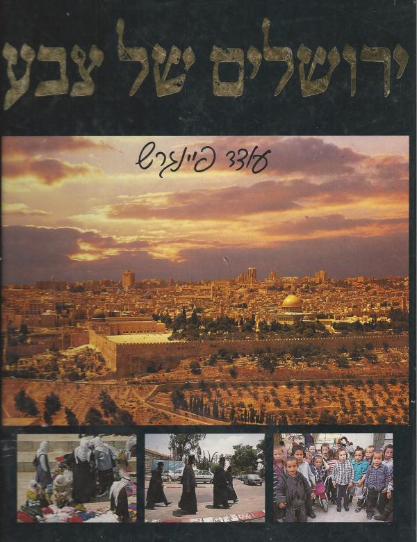 ירושלים של צבע - עודד פיינגרש